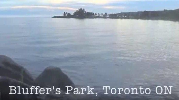 Bluffer's park, Toronto